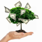 Pengetræ - tjen penge - lån