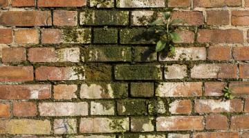 Hvorfor skal man omfuge sit murværk